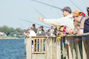 for Bill burton fishing pier state park